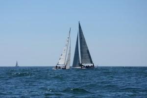 ORC regata