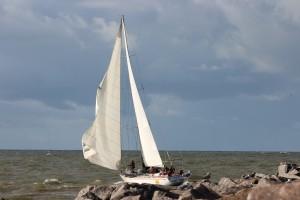 2016 regata rudenine baltija (11)